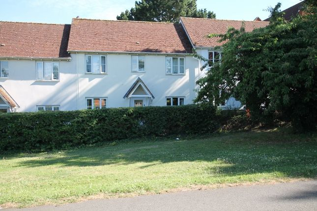 Thumbnail Terraced house to rent in Wilkinson Grove, Black Notley, Braintree