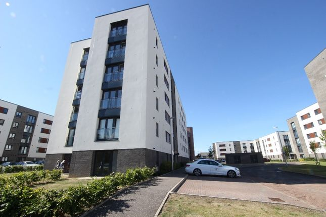 Thumbnail Flat to rent in Arneil Drive, Pilton, Edinburgh