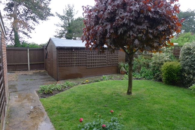 Rear Garden of Thirlwall Drive, Fordham, Ely CB7