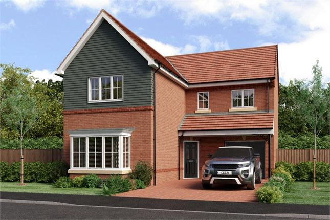 "Thumbnail Detached house for sale in ""Fenwick"" at Buttercup Gardens, Blyth"