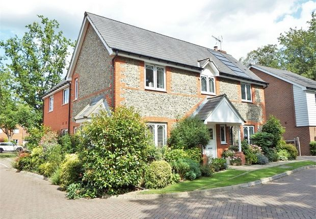 Thumbnail Detached house for sale in Kukri Gardens, Church Crookham, Fleet, Hampshire