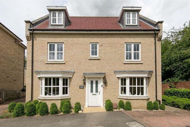 Thumbnail Detached house for sale in Dove House Meadow, Great Cornard, Sudbury