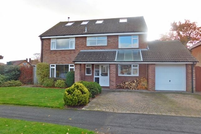 Thumbnail Detached house to rent in Canterbury Road, Stubbington, Fareham