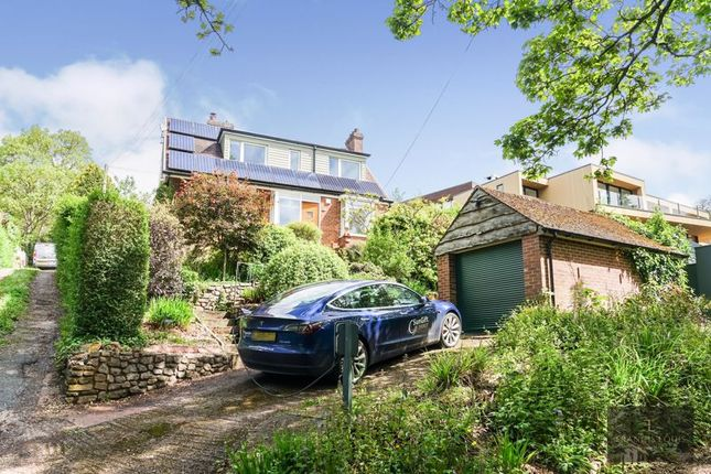 Thumbnail Detached house to rent in Lodge Hill, Exeter