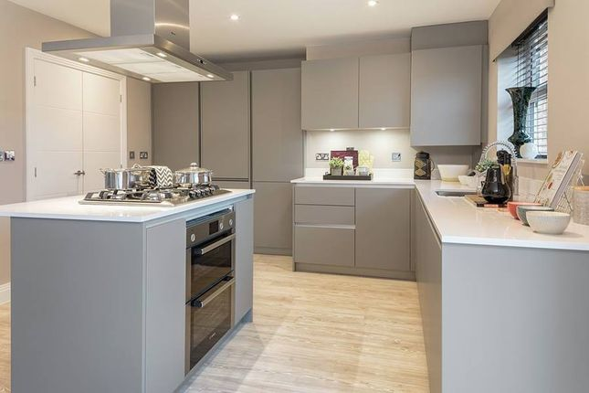 """Thumbnail Detached house for sale in """"The Vale"""" at Westlake Avenue, Hampton Vale, Peterborough"""