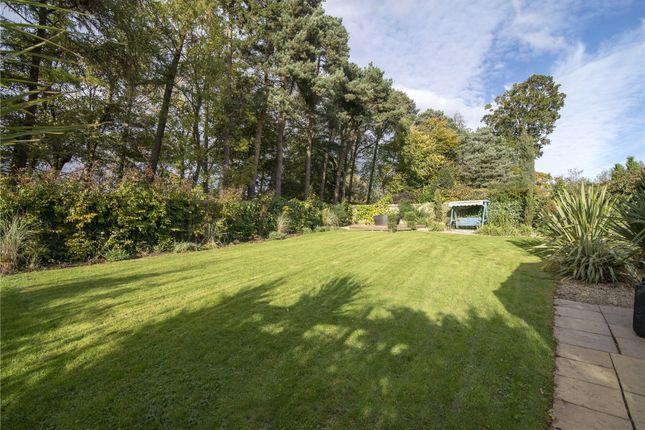 Garden of Douglas Avenue, Airth, Falkirk FK2