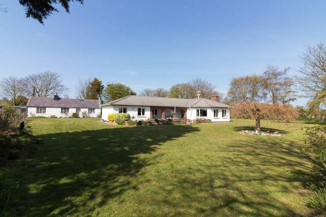 Thumbnail Detached bungalow for sale in Kissack Croft, Clenagh Road, Sandygate