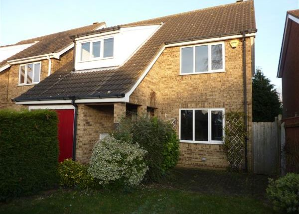 Thumbnail Detached house for sale in Chadwell Springs, Waltham, Grimsby