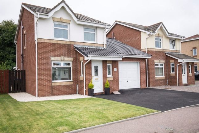 Thumbnail Detached house to rent in Boswell Road, Portlethen, Aberdeenshire