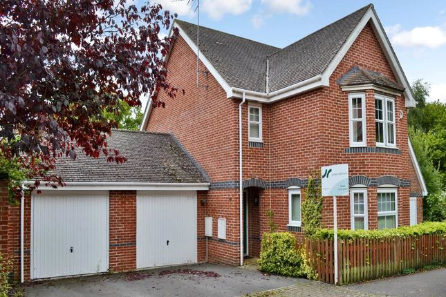 Thumbnail Detached house to rent in Pinewood Crescent, Hermitage, Berkshire