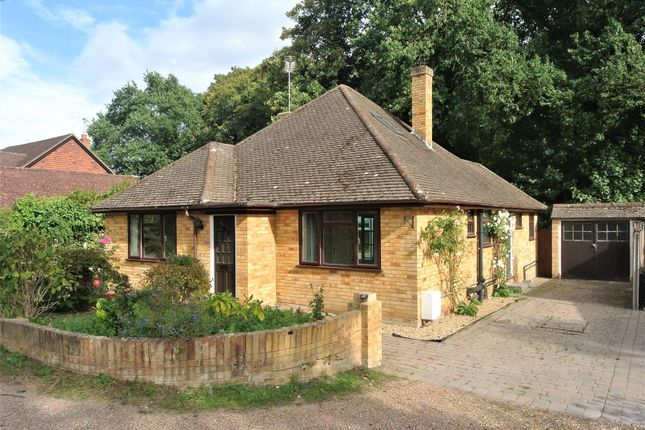 Thumbnail Bungalow to rent in Ottermead Lane, Ottershaw, Chertsey