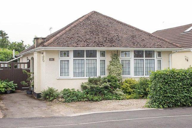 Thumbnail Detached bungalow for sale in Downs Park Avenue, Totton, Southampton