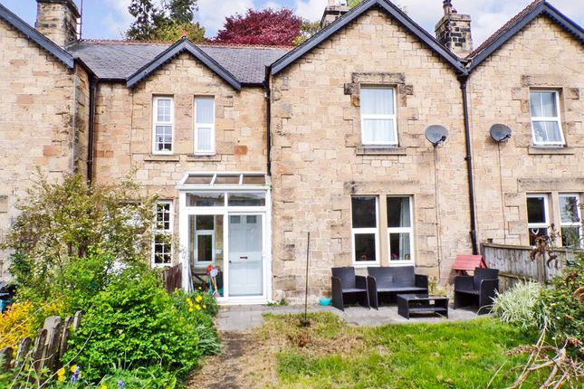 Thumbnail Terraced house to rent in Alexandra Terrace, Haydon Bridge, Hexham