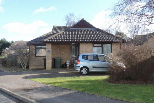 Thumbnail Detached bungalow for sale in Mansell Close, Bexhill On Sea, East Sussex