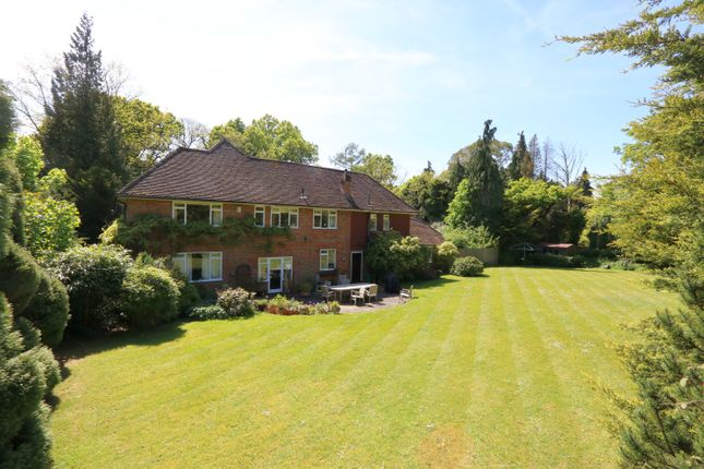 Thumbnail Detached house for sale in Hurtmore, Godalming, Surrey