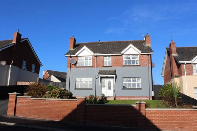 Thumbnail Detached house for sale in Castlekeele, Newry