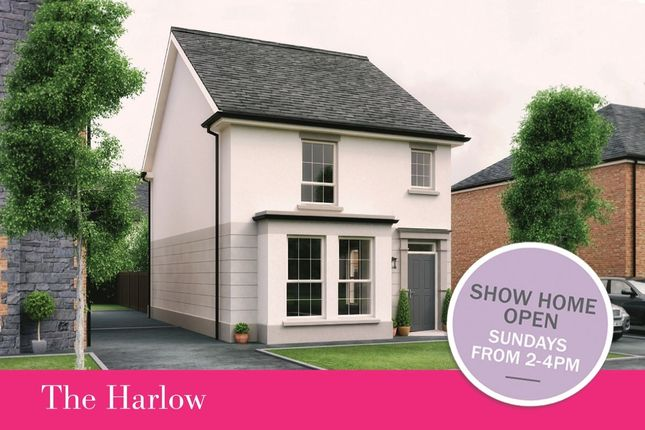 Thumbnail Detached house for sale in - The Harlow Dillon/Harlow Green, Meeting Street, Moira