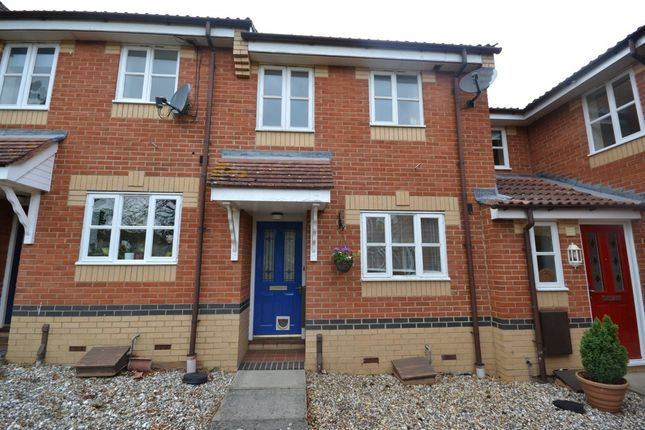 Thumbnail Terraced house to rent in Morton Close, Ely