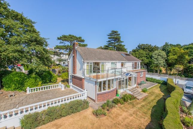 Thumbnail Detached house for sale in Daddyhole Road, Torquay