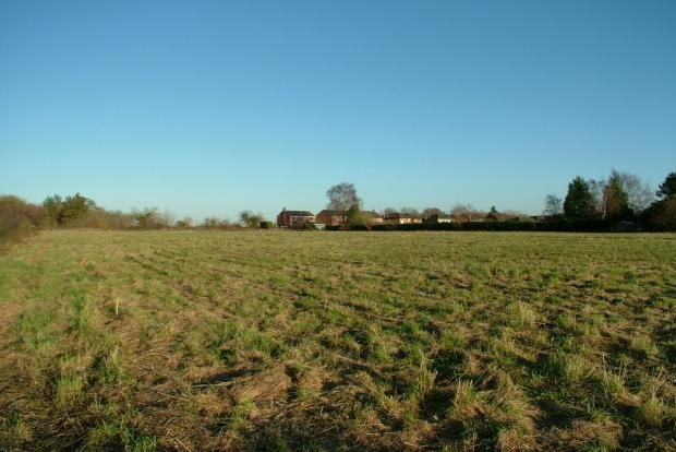 Thumbnail Land for sale in Church Road, Tasburgh, Norwich