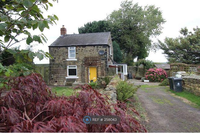 Thumbnail Detached house to rent in Burradon Farm, Cramlington