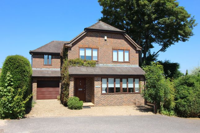 Thumbnail Detached house to rent in Park Mount, Pound Hill, Alresford