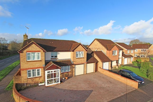 Front Elevation of Fulford Drive, Cullompton EX15