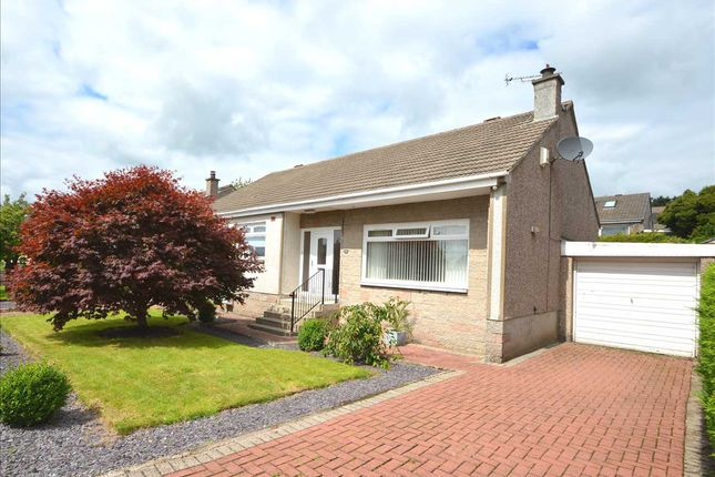 Thumbnail Bungalow for sale in Cherrytree Place, Strathaven