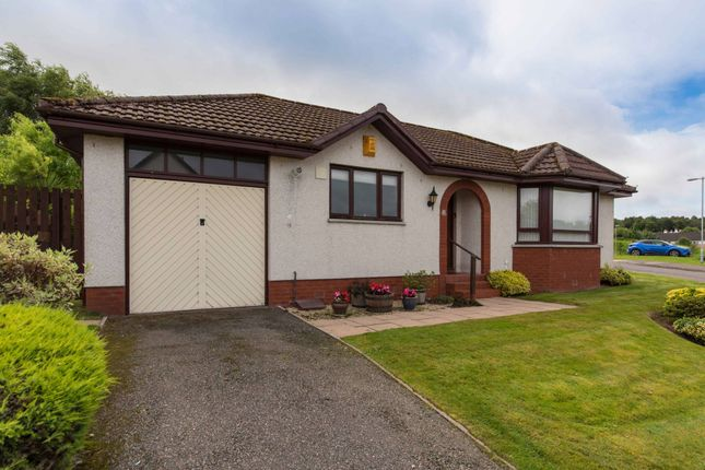 Thumbnail Bungalow for sale in Wellside Gardens, Balloch, Inverness, Highland