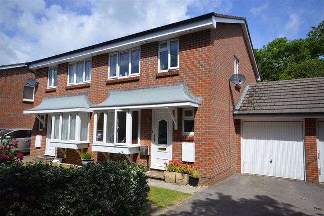 Thumbnail Semi-detached house to rent in Fawn Gardens, New Milton