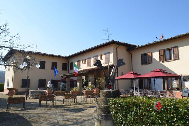 Photo of Via Diga, Cavriglia, Arezzo, Tuscany, Italy