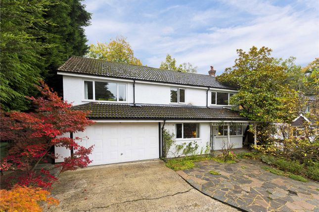 Thumbnail Detached house for sale in Bramble Bank, Frimley Green, Camberley