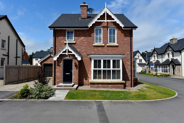 Thumbnail Detached house for sale in Tullynagardy Lane, Newtownards
