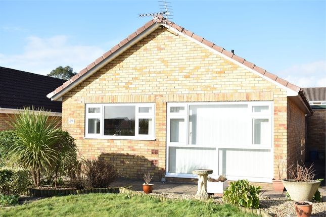 Thumbnail Detached bungalow to rent in Elan Way, Caldicot