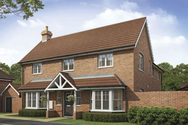 Thumbnail Detached house for sale in Saxon Heights, Augusta Park, Andover