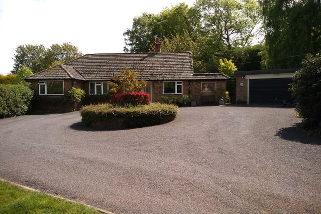 Thumbnail Detached bungalow for sale in Sandhurst Lane, Bexhill-On-Sea