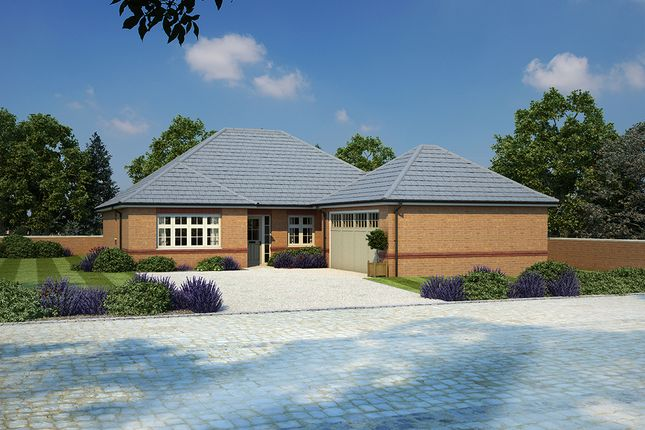 Thumbnail Bungalow for sale in Stanbury Meadows, Camomile Way, Newton Abbot, Devon