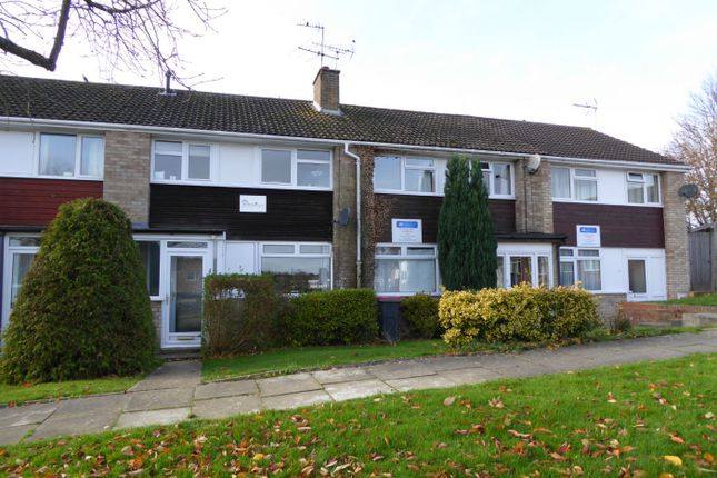 Thumbnail Terraced house to rent in Tenterden Drive, Canterbury