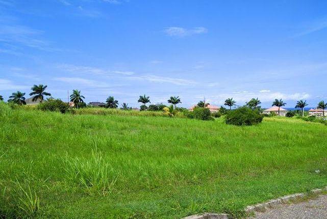 Land for sale in Laughlands, Saint Ann, Jamaica