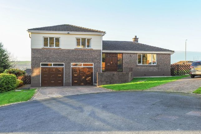 Thumbnail Detached house for sale in Lambert Rise, Dundonald, Belfast
