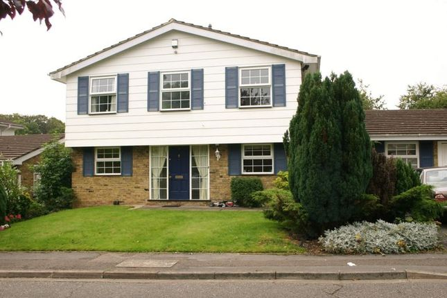 Thumbnail Detached house to rent in Copperfields, Beaconsfield