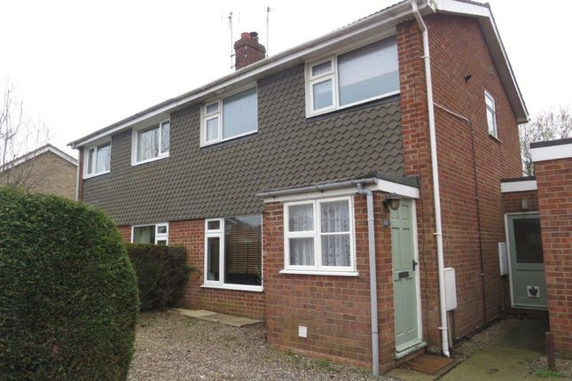 Thumbnail Property to rent in Partridge Road, Aylsham, Norwich
