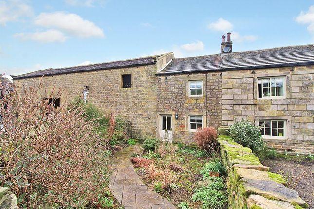 Thumbnail Property to rent in Low Lane, Darley, Harrogate