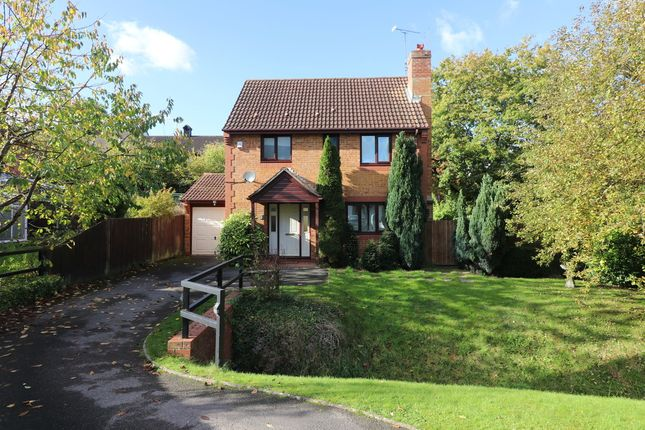 Thumbnail Detached house for sale in Mallow Road, Hedge End, Southampton