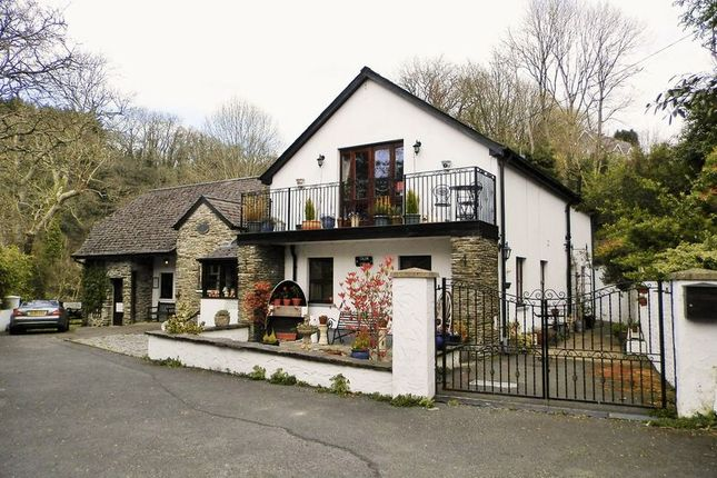 Thumbnail Detached house for sale in Cenarth Mill, Cenarth, Newcastle Emlyn