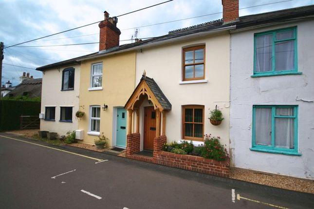 Thumbnail Terraced house to rent in Station Road, Bentley, Farnham