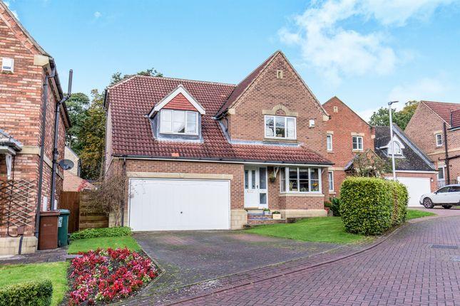 Thumbnail Detached house for sale in Beech Walk, Adel, Leeds