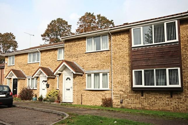 Thumbnail Terraced house to rent in Ladywell Prospect, Sawbridgeworth, Herts