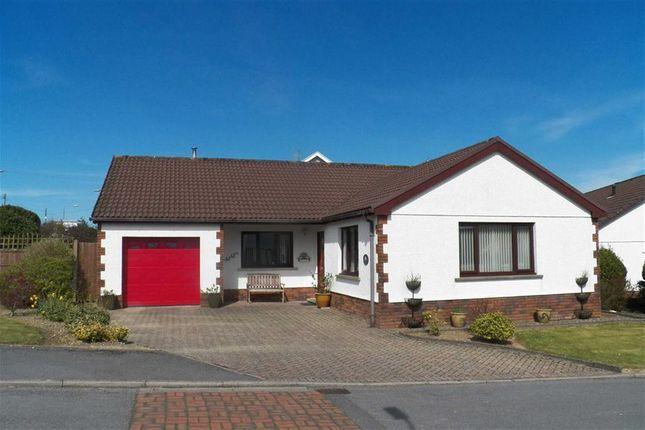 Thumbnail Detached bungalow for sale in Rhydargaeau, Carmarthen