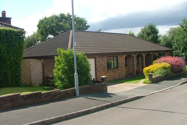 Thumbnail Bungalow to rent in Maesglasnant, Cwmffrwd, Carmarthen